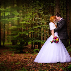 Wedding photographer Alena Sreflova (sreflova). Photo of 15.01.2014