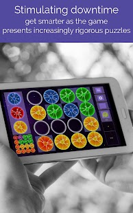 Logic Puzzles - Games for the Brain, Plasma Style Screenshot