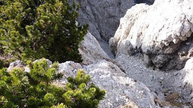 Photo: prehod po grebenu nato spust levo