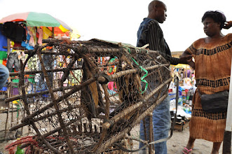 Photo: fruit bats to sell ...source of ebola virus