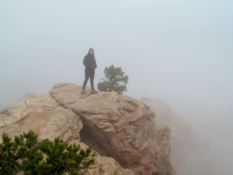 Photo: Dollie in the fog