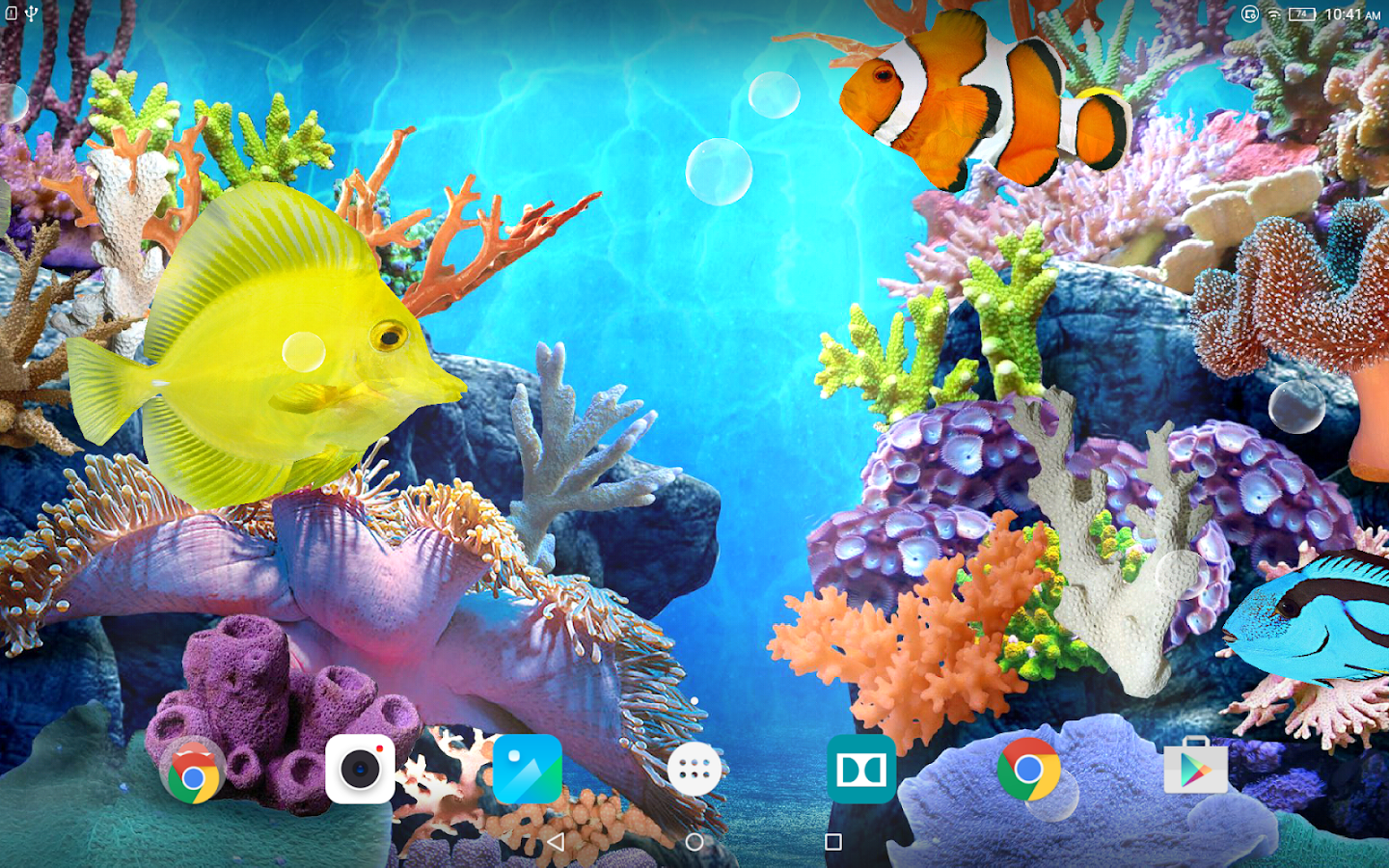 Coral fish live wallpaper android apps on google play for Live fish wallpaper