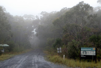 Photo: Heavy Fog/light rain greeted us at the entrance to Dharawal