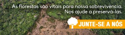 Dia da proteção florestas