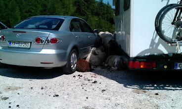 Photo: Ce bi prehitr przgala klimo bi lohka se cel avto ovc dam pelala..