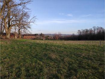 terrain à Saint-Pardoux-l'Ortigier (19)