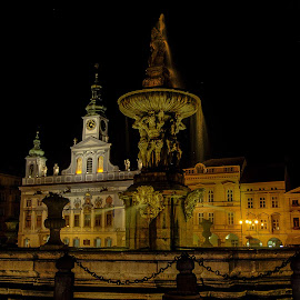 Česke Budějoovice  by Michal Valenta - City,  Street & Park  Fountains ( cz, fountains )
