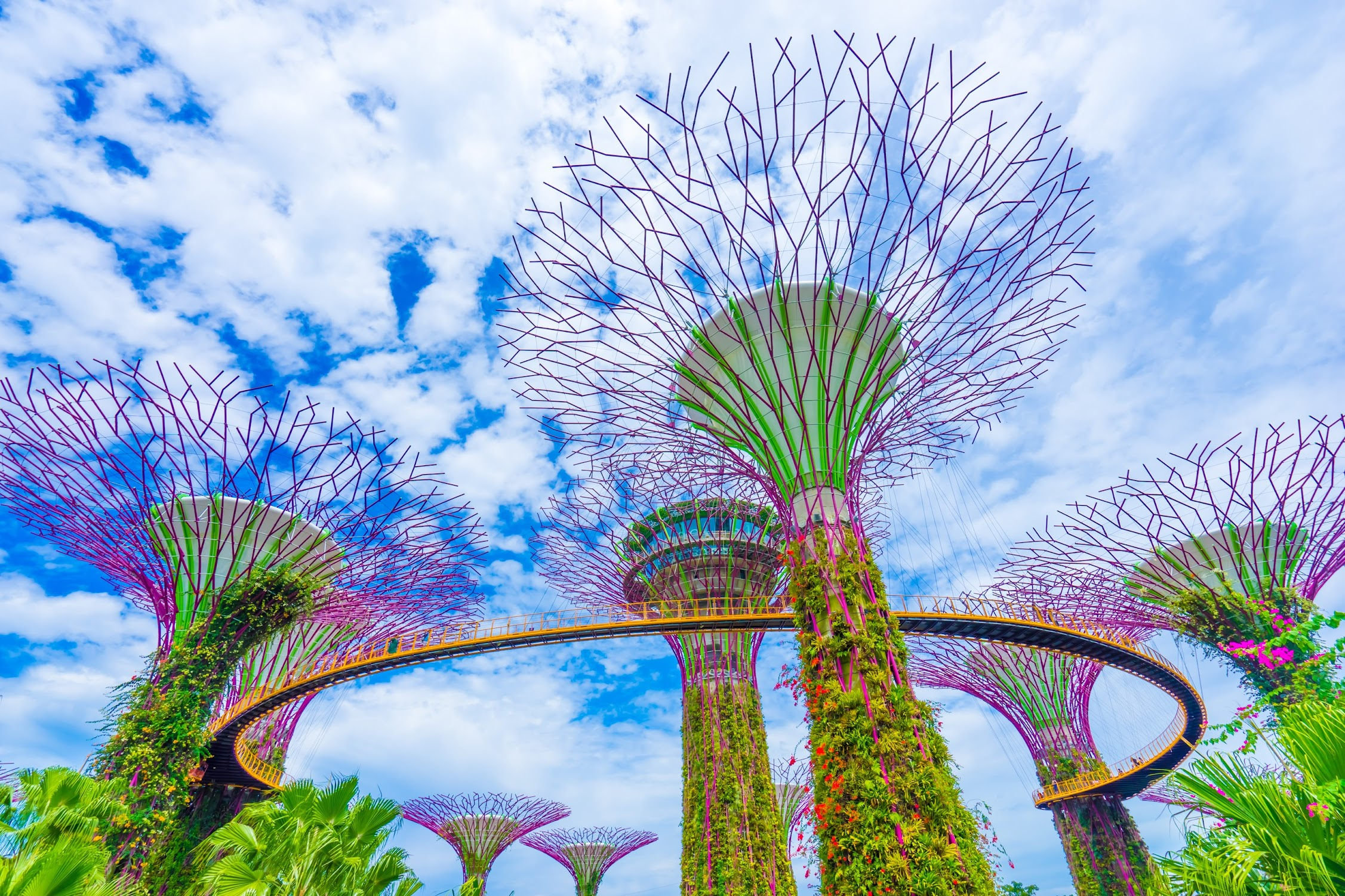 Gardens by the Bay Supertree Grove1