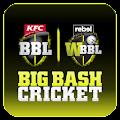 Big Bash Cricket download