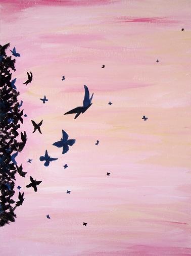 Photo: Butterflies part1