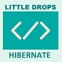 Learn Hibernate (Offline Docs) icon
