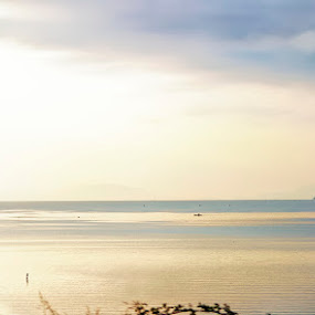 Lake Skadar by Aleksandar Filipović - Landscapes Sunsets & Sunrises ( clouds, montenegro, europe, sky, train, lake, view, sunrise, morning, sun )