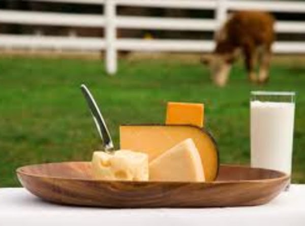 Milk, Cheese, and Yogurt Not only are dairy foods -- like milk, cheese, and yogurt...