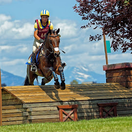 Cross Country Jumping - 2067 by Twin Wranglers Baker - Sports & Fitness Other Sports (  )