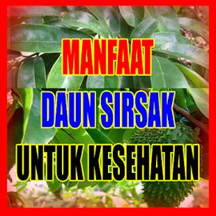 Manfaat Daun Sirsak Ajib - náhled
