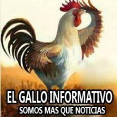 El Gallo Informativo