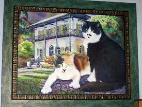 Photo: The famous 6-toed cats of Hemingway's house. At any moment, there are about 40 of them roaming everywhere around and in the house