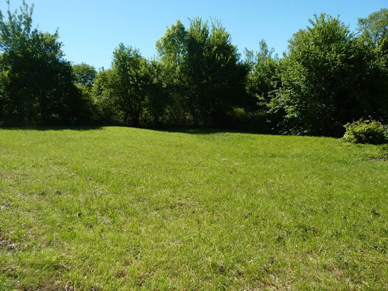 Vente terrain à bâtir 1000 m2