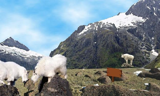 Escape from North Glacier|玩解謎App免費|玩APPs
