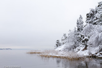 Photo: A calm winter day with clouds hanging low in Hyggen, by the Drammens fjord in South Eastern Norway
