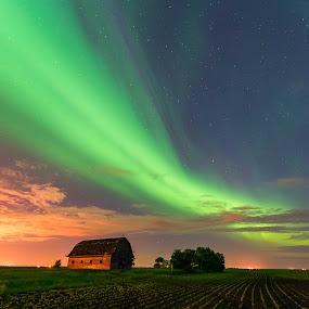 Field of dreams by Nebojsa Novakovic - Landscapes Starscapes ( clouds, canada, aurora borealis, northern lights, big dipper, oak hamock marsh, landscape, moonlight, nightscape, ohm, manitoba, shed, nature, barn, nelepl, stars, nikon d600, stargazing, 14-24, dancing sky, abandoned )