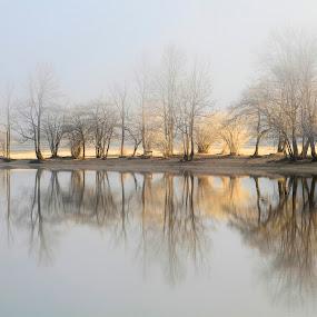 mornig on the lake by Bor Rojnik - Landscapes Waterscapes ( dreamy, national park, foggy, fog, triglav national park, slovenia, sunrise, light, #GARYFONGDRAMATICLIGHT, #WTFBOBDAVIS,  )