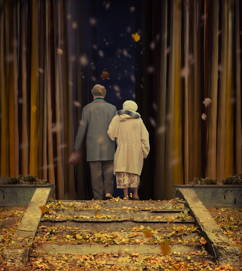 We are all what we need by Caras Ionut - Digital Art People ( adventure, old, stairs, woman, inside, dark, forest, leaf, man )