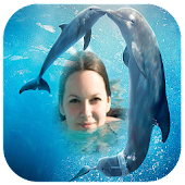 Dolphin Photo Frames