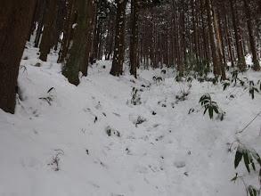 硬い雪道を一気に降りる