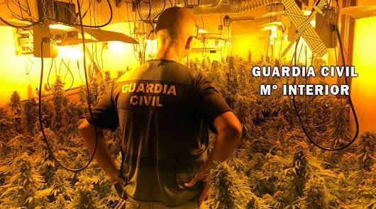 Detenida por cultivar marihuana en un chalet cerca de un parque infantil