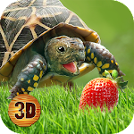 Turtle Simulator: House Life Icon