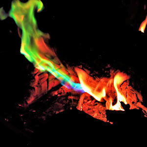 Fire colored (52).JPG