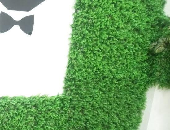 Kinh ngạc với bước phát triển của thảm cỏ nhựa từ sân đá banh sang trang hoàng