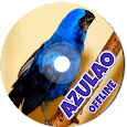 Canto do Azulão (Cyanocompsa Brissonii) apk