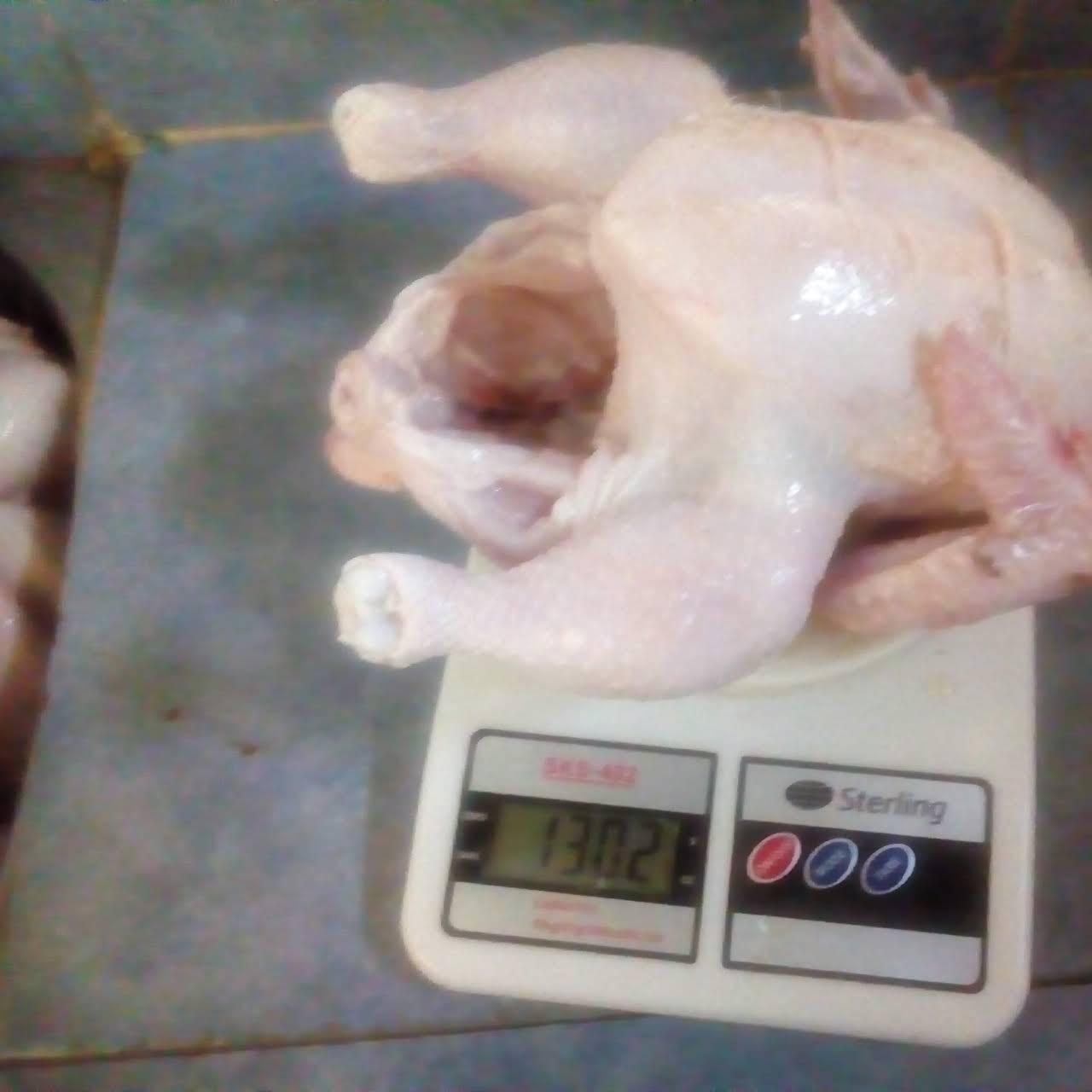Joe's Fresh Chicken and Rabbit Farm - Farm in Kisumu
