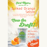 Fort Myers Spiked Orange Seltzer