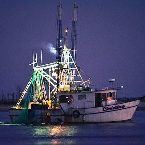 Fresh Gulf Shrimp by Jennifer Eaton Roberts - Transportation Boats ( water, biloxi, gulf coast, night, mississippi )