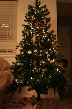 Photo: With the light off and the tree lit it was starting to look like Christmas
