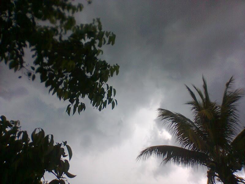 Photo: alcanzando el cielo