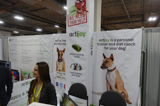 Photo: Once again, IoT for dogs and cats is disturbingly popular.   Seriously?
