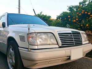 Eクラス ステーションワゴン W124 E300 ターボディーゼルのカスタム事例画像 ひろちゃんさんの2018年11月18日22:12の投稿