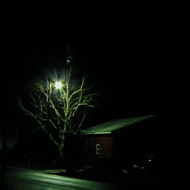 Tee-Pee House at Night by Judy Soper - City,  Street & Park  Neighborhoods ( red, country, barn, light, fremont, night, tree, ohio )