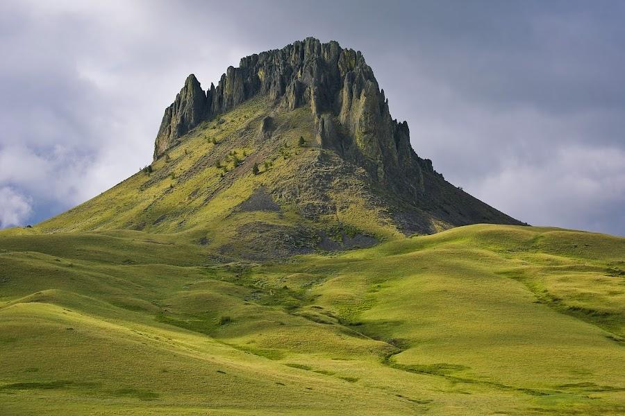 The beauty of Birdtail Rock by Teri Garrison-Kinsman - Landscapes Mountains & Hills ( springtimeinmontana, hills, montana, birdtailrock, springtime, montanascenery )