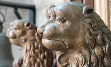 Photo: Lion head on carved wooden bench - Aubazine, Correze