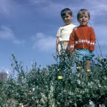 Photo: With my brother, Erik, at the Belgian Coast, 1974
