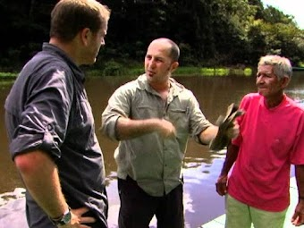 Episode 206: Giant Anaconda