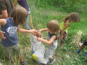 Photo: raccogliamo le spighe di grano