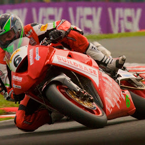 Neck & Neck by Steve Bampton - Sports & Fitness Other Sports ( british superbikes, racing, motor bikes )