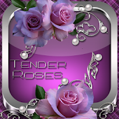Tender Roses Go Launcher theme
