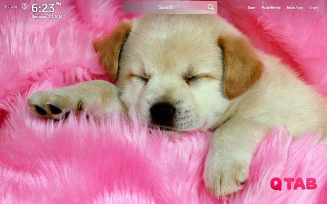 Pink Wallpapers Theme Pink New Tab